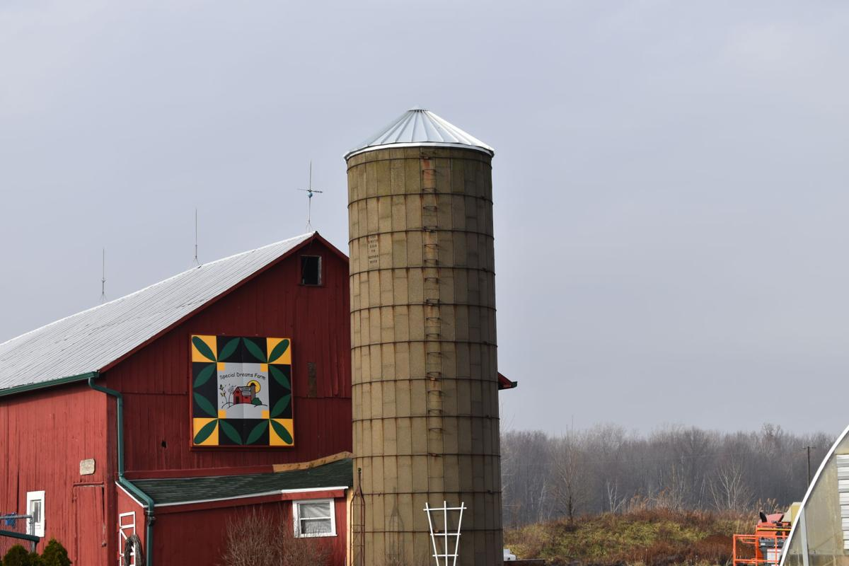 New Silo Cover at St. Clair's Special Dreams Farm
